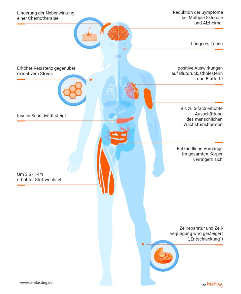Intervallfasten Nebenwirkungen